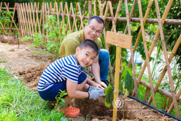 Lễ trồng cây ở làng Maya